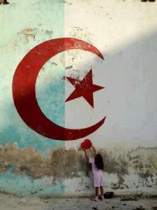 Sursaut Republicain Algerie